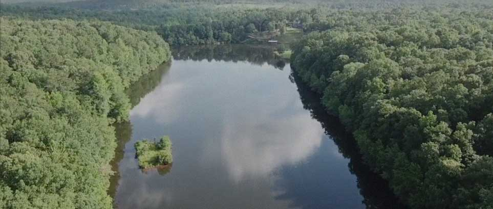 Land For Sale In Alabama | Tutt Land Real Estate