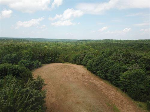 828ac-benton-tract-tyler-lowndes-county-alabama-201576--QycGh.jpg