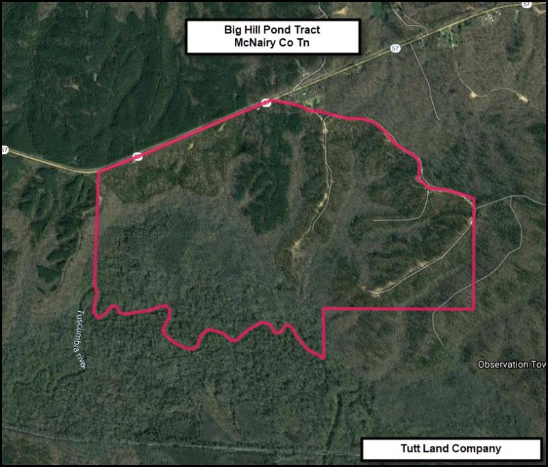 Miller-575 ac-McNairy Co Tn-Big Hill Pond Tract.jpg