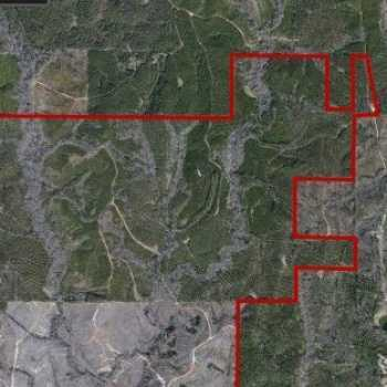 Hunting Clubs For Lease In Alabama | Rural Land For Sale