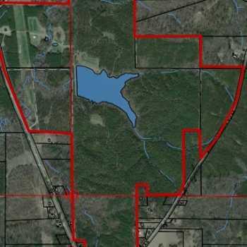 385 Ac Marengo County Tutt Land Company