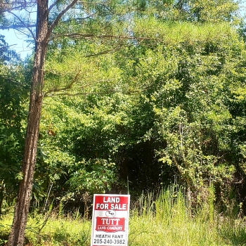 Land for Sale in Alabama, Mississippi & Tennessee | Tutt
