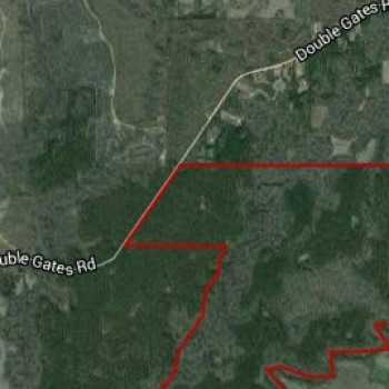 Hunting Clubs For Lease In Alabama | Rural Land For Sale | Tutt Land Co