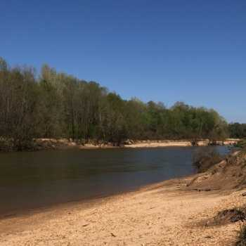 Land for Sale in Alabama, Mississippi & Tennessee   Tutt